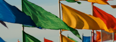 Image of multi coloured flags